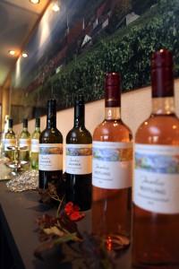 Nahaufnahme dekorativer Weinflaschen Rotling, Silvaner, Müller Thurgau